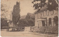 Elm Tree House and School Class assembled Postcard, circa 1920s