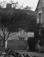 A closer look over the gate of Ivy House in 1910.